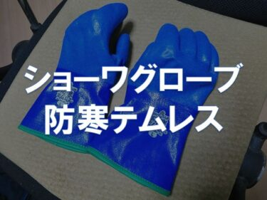 【レビュー】ショーワグローブ「防寒テムレス」