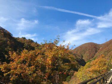 BRM1031鬼怒川600 走行編④PC6:西那須野~PC9:みどり(483km)