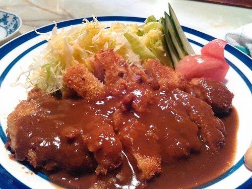 東京→糸魚川ファストラン2015 プロローグ