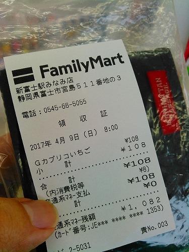 Fleche2017 本編⑧三保~GOAL(376km)